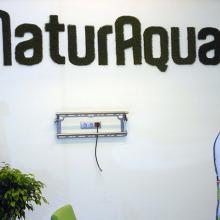 Naturaqua székház beltereinek dekorálása